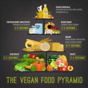 vegan food pyramid   My Power Life