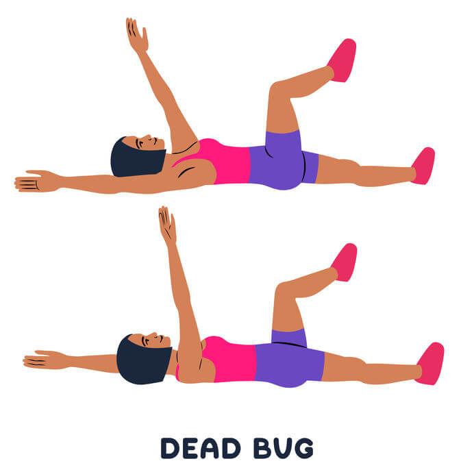 dead bug exercise | My Power Life